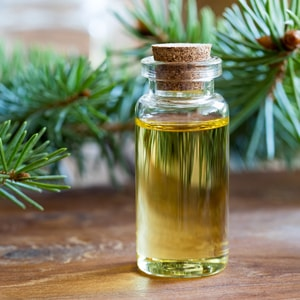 SPRUCE </br> essential oil  or floral water