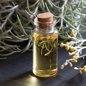 HELICHRYSUM ITALICUM </br> essential oil  or floral water