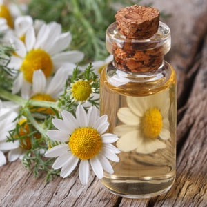CHAMOMILE ROMAN </br> essential oil  or floral water
