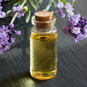 LAVENDER </br> essential oil  or floral water